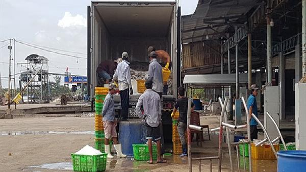 Đông Hải- Bạc Liêu: Xây dựng nông thôn mới là nền tảng để phát triển kinh tế