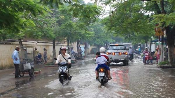 Bạc Liêu: Chuẩn bị nhiều phương án ứng phó với biến đổi khí hậu để phát triển bền vững