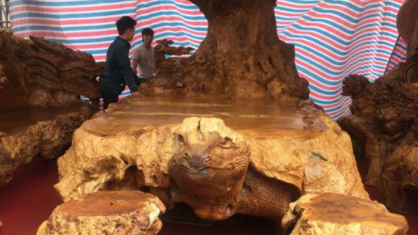 Bắc Ninh: Bộ kỳ mộc bằng gỗ nu đinh nghìn năm tuổi được chào giá 3 tỷ đồng