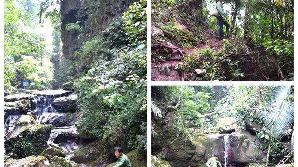 Hang rồng mới phát hiện ở rừng Quảng Ninh độc, lạ đến BẤT NGỜ !