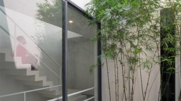"""Công trình """"Nhà trong cây"""" ở Bắc Ninh khiến báo ngoại mê mẩn"""