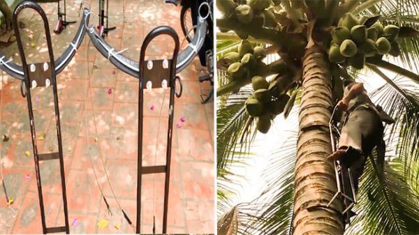 Dân miền Tây vui mừng khôn xiết khi tìm được bộ dụng cụ leo dừa dễ như leo cầu thang