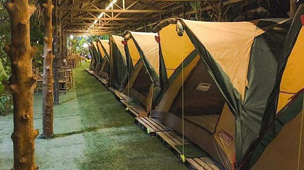 Rủ ngay 'đồng bọn' về check in homestay ở miền Tây đẹp 'ẩn mình' giữa rừng dừa