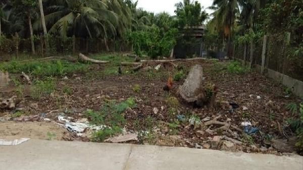 Bến Tre: Mượn tách hộ để làm hồ sơ phân lô bán nền đất nông nghiệp