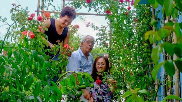 Chàng trai Bến Tre làm vườn hồng đủ màu trên ban công tặng cha mẹ