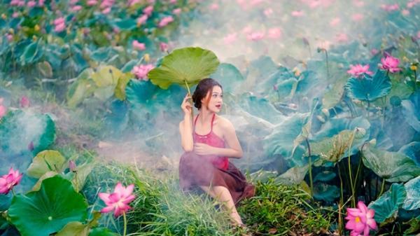 Đẹp xao xuyến mùa sen Đà thành dưới ống kính của giới trẻ