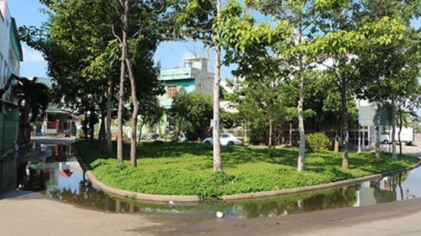 Bình Thuận: Ngập nước bốn mùa ở vườn hoa khu dân cư