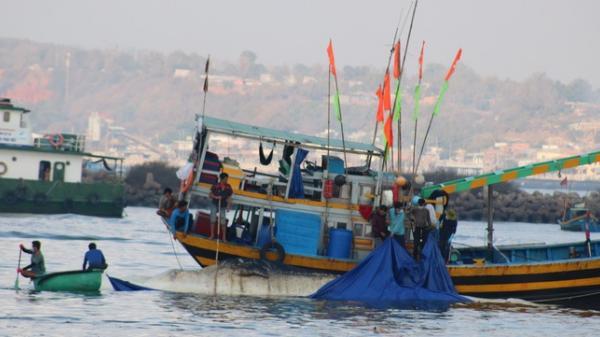 Hành trình đưa cá voi nặng gần 10 tấn vào bờ an táng