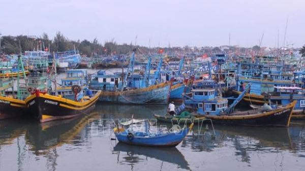 Mở rộng trạm xử lý nước thải Cảng cá Phan Thiết