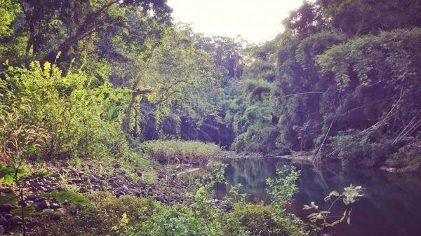Bình Phước: Khám phá vườn quốc gia Bù Gia Mập