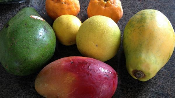 Mẹo đơn giản làm trái cây nhanh chín