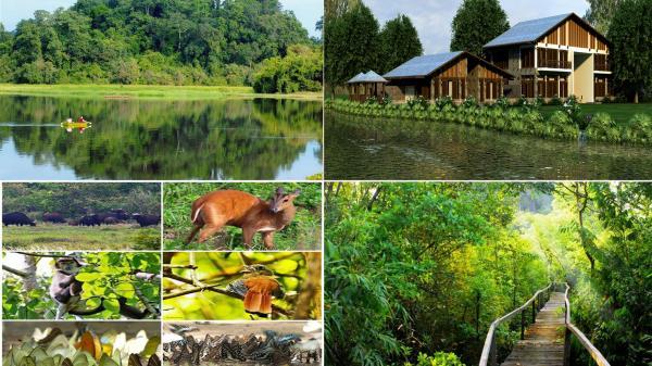 CÓ THỂ BẠN CHƯA BIẾT:Kinh nghiệm du lịch vườn quốc gia Cát Tiên