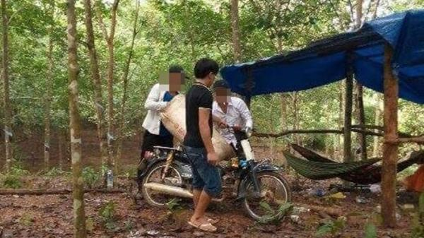Vụ côn đồ náo loạn vùng quê: Thanh tra Chính phủ yêu cầu tỉnh Bình Phước xem xét, giải quyết