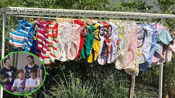 Nữ sinh năm 2 về quê ăn Tết bị hàng xóm đồn chửa hoang vì phơi quần áo chó mèo: Người yêu chưa có mà đồn ác!