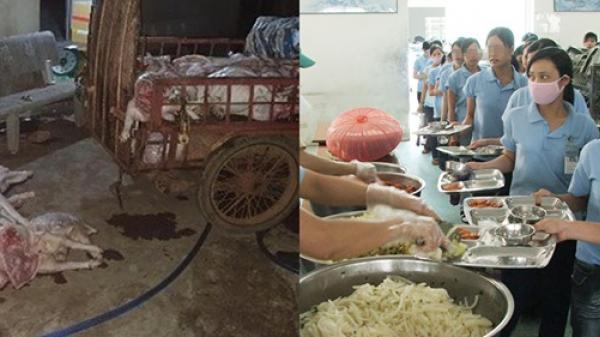Bắt quả tang cơ sở mua heo ch.ết giá 50 nghìn đồng/con về xẻ thịt, bán cho công nhân KCN ở Đồng Nai
