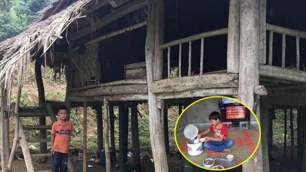 Cậu bé sống 1 mình trong rừng đã có nhà mới nhưng chưa có ai ở cùng