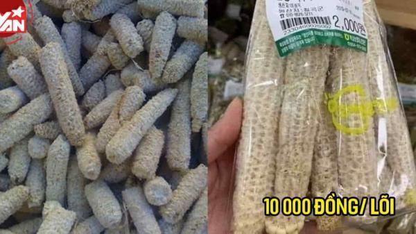 Lõi ngô là thứ vứt đi tại Việt Nam nhưng khan hiếm ở nước ngoài