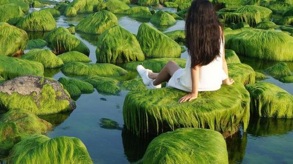 """Về Bình Thuận nhất định phải phi ngay đến BÃI ĐÁ RÊU XANH đẹp như cổ tích này """"sống ảo"""""""