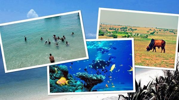 Đến Bình Thuận khám phá Cù Lao Câu - Hòn đảo có vẻ đẹp đốn tim du khách