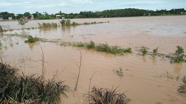Mưa lớn, lốc xoáy ở Tánh Linh, ước thiệt hại trên 10 tỷ đồng