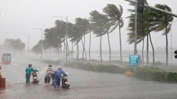Ninh Thuận - Bình Thuận sắp đón bão số 5, miền Trung mưa rất lớn
