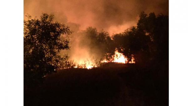 Bình Thuận: Kịp thời khống chế một đám cháy lớn