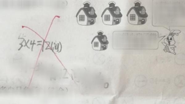 """Đề bài: """"Có 4 nhà, mỗi nhà có 4 con thỏ. Hỏi tổng cộng có bao nhiêu con"""", đáp án 16 là sai?"""