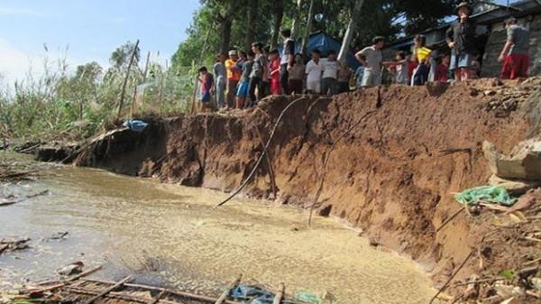 Sạt lở nghiêm trọng trên địa bàn huyện Trần Văn Thời (Cà Mau)