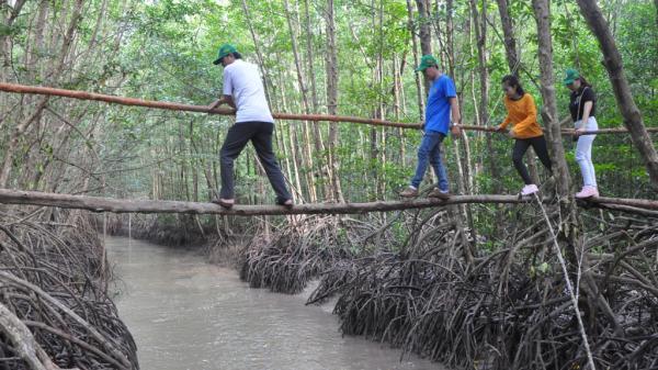 Khai trương tuyến tham quan xuyên rừng Vườn quốc gia Mũi Cà Mau