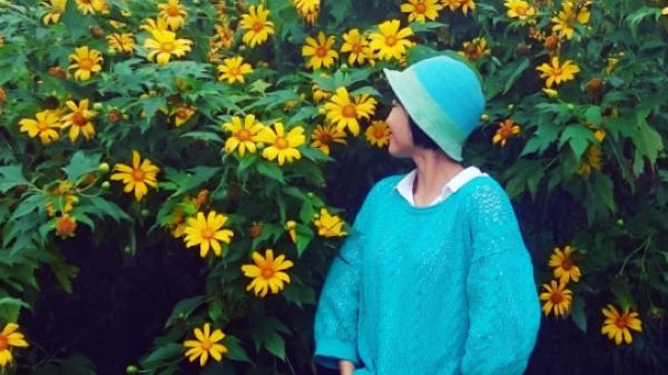 Phú Thọ có vườn hoa dã quỳ rộng hơn 1 ha đẹp ngất ngây, đến check in ngay nào !