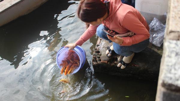 Mẹ trượt chân xuống sông khi thả cá tiễn ông Công ông Táo, bé trai kêu cứu thảm thiết vẫn bất thành