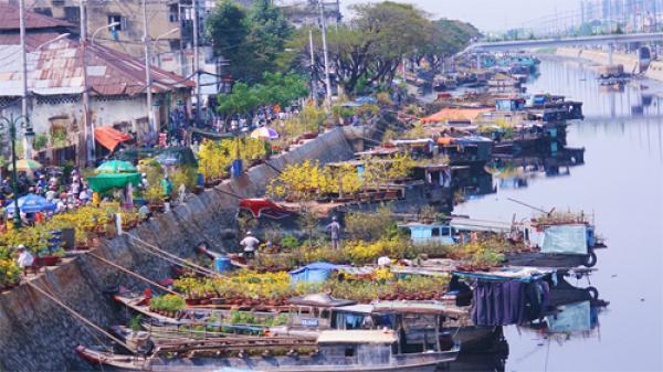 Những hội hoa xuân đông khách nhất ở Sài Gòn