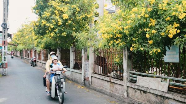 Có một mùa hè vàng rực quanh con xóm nhỏ đường ray tàu ở Sài Gòn