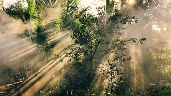 Có một Cần Thơ đẹp đến 'thổn thức' trong bộ ảnh Việt Nam của nhiếp ảnh gia người Anh