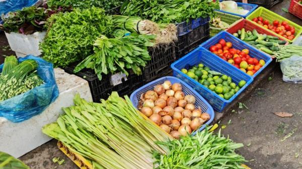 Cua, tôm và rau ở miền Tây tiếp tục rớt giá