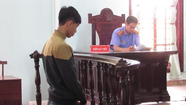 Cần Thơ: Thanh niên bật khóc, quỳ sụp xin tòa giảm hình phạt