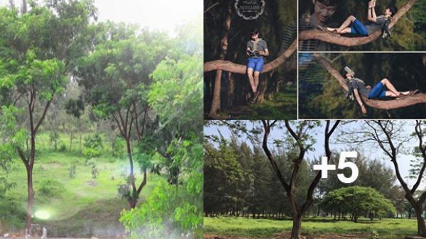 Cần Thơ: Những hình ảnh đẹp về công viên ở KĐT mới đang bị 'xóa'