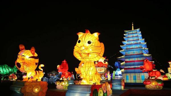 Quên lối về với lễ hội Đèn lồng khổng lồ đầu tiên ngay gần Trà Vinh