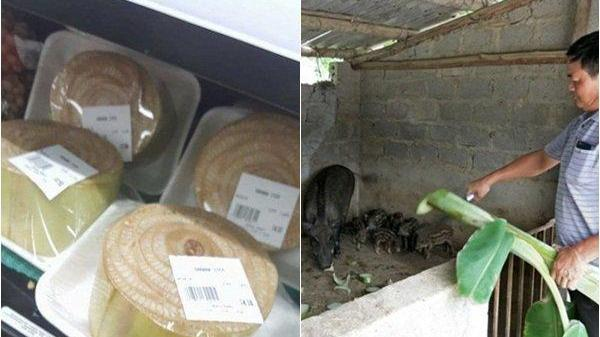 Khúc thân chuối 10cm: Ở Nhật 280 ngàn, Việt Nam băm cho lợn