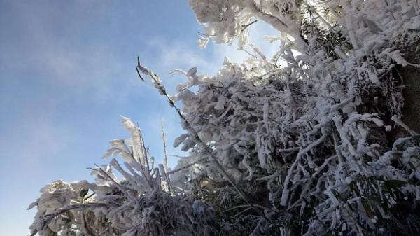 Nhiệt độ giảm kỷ lục, vùng núi Bắc Bộ rét âm 0,2 độ C
