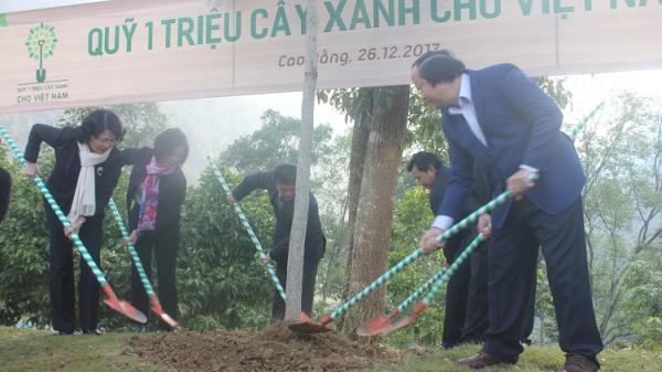 Phó Chủ tịch nước Đặng Thị Ngọc Thịnh thăm, làm việc tại Cao Bằng