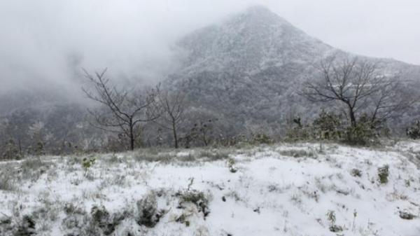 Cận cảnh đỉnh núi Phia Oắc, Cao Bằng đẹp kỳ vĩ trong băng tuyết