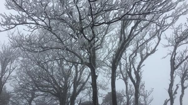 """Khí lạnh tràn về, băng giá """"bủa vây"""" núi cao ở Cao Bằng"""