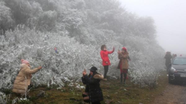 Tuyết rơi ở Cao Bằng và 1 số tỉnh miền núi: Người vui thì ít, người lo thì nhiều