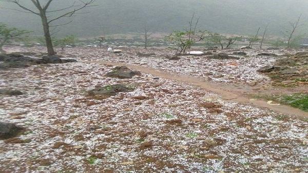 Cao Bằng: Mưa đá, kèm gió lốc thiệt hại trên 1,2 tỷ đồng