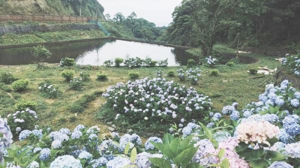Địa điểm check-in tại Cao Bằng khiến giới trẻ phát sốt
