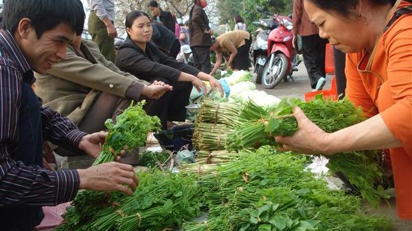 Cuốn hút những món ngon từ rau rừng ở Cao Bằng