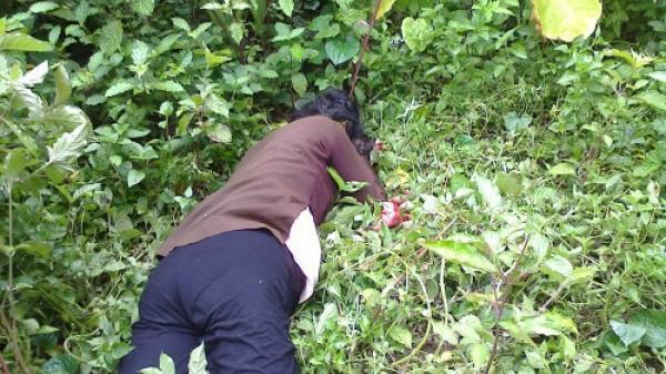 SỐC: Dùng dao đâm chết mẹ vì bị ngăn cản đập phá bàn thờ tổ tiên