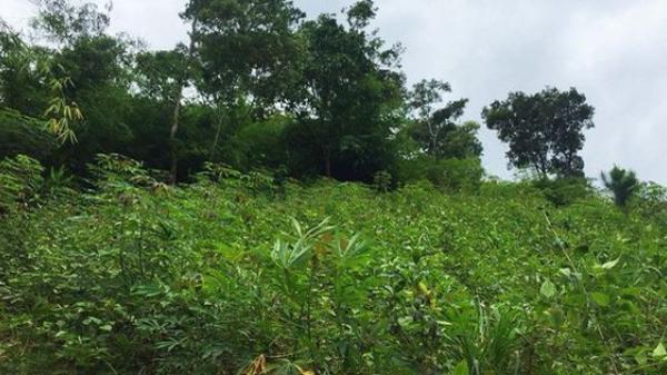 Án mạng lạ lùng: Thanh niên 25 tuổi chết vì 'trúng gió độc' bị khai quật tử thi mới phát hiện sự thật