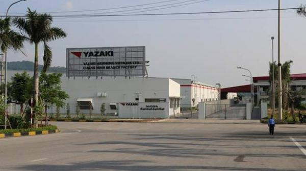 """Quảng Ninh: Nhà máy Yazaki đóng cửa, hàng vạn người lao động """"treo niêu"""""""